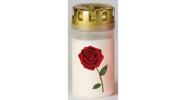 Graflicht 13cm. Single red rose
